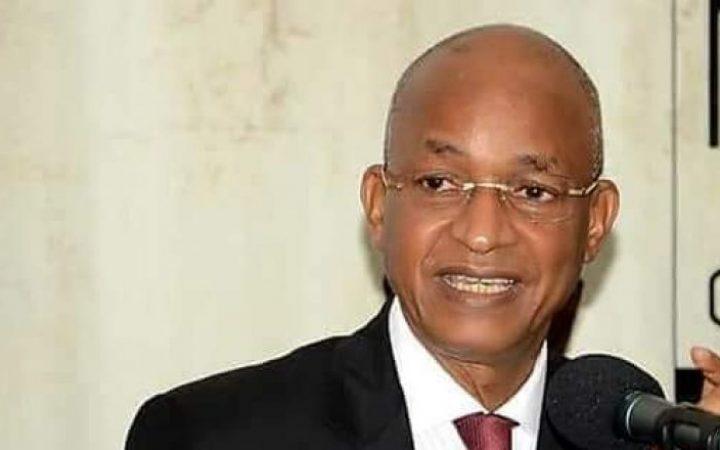 REVISION CONSTITUTIONNELLE : Cellou Dalein Diallo dit ''Niet'''