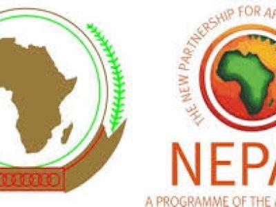 BAD-UA-NEPAD : lancement le moteur de recherche de l'industrie agroalimentaire africaine,