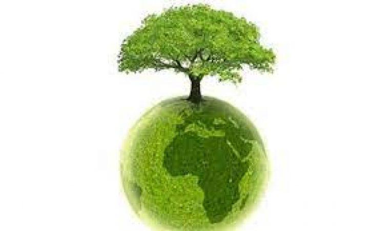 DEVELOPPEMENT : la BAD et l'Alliance pour une révolution verte en Afrique
